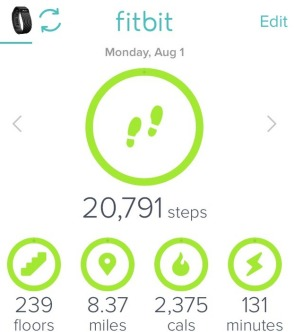 Fitbit stats - I know we were active more than 131 minutes, c'mon!