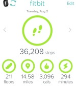 Fitbit stats for day 2 of the hike