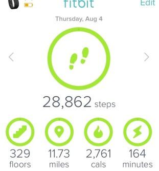 Fitbit stats for Machu Picchu trek day