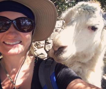 Llama selfie at Machu Picchu