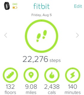 Fitbit stats for the Ollantaytambo day