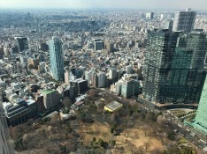 3.1488023484.shinjuku-gyoen-national-garden