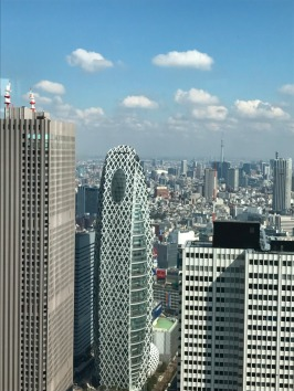 Views from the Tokyo Metropolitan Government Building