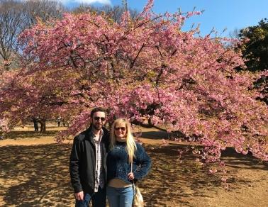 Yoyogi Park cherry blossom