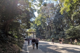 This is the trail that spans throughout Yoyogi Park and Meiji Jingu, it's shrouded by beautiful trees; sort of reminiscent of walking through Central Park in NYC, the fact that there is such a lush green space in the middle of a crazy, bustling city.