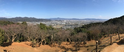 View over Kyoto from the Arashiyama Monkey Park