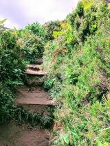 Trail down to water level of Lagoa do Fogo