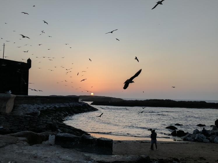 Essaouira Morocco Sunset