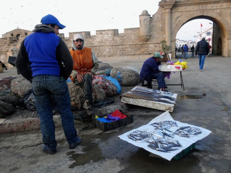 Fishermen in Essaouira Morocco