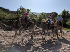 Riding Camels near Ourika Valley Morocco