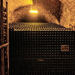 Champagne Cellar in Reims
