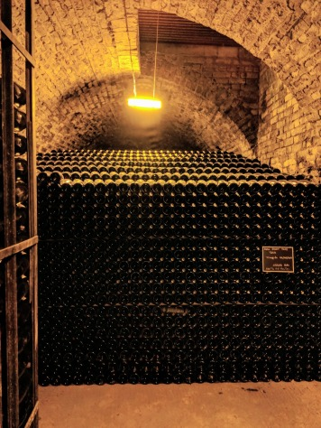 Champagne Cellar in Reims