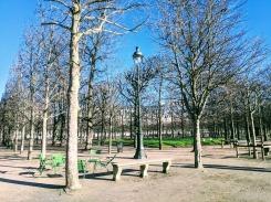 Jardin des Tuileries in winter