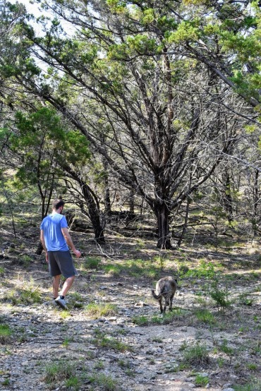 Whiskey Creek Ranch Wimberley Texas