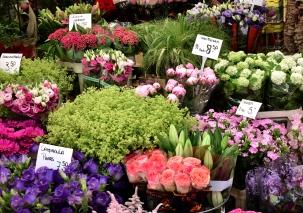 Amsterdam - flower market flowers