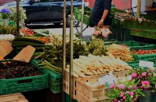 Farmers Market White Asparagus