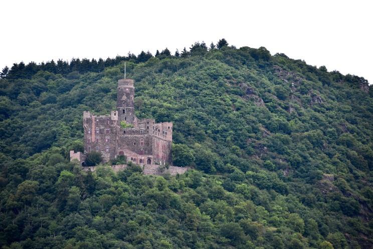 Rhine River Castel2