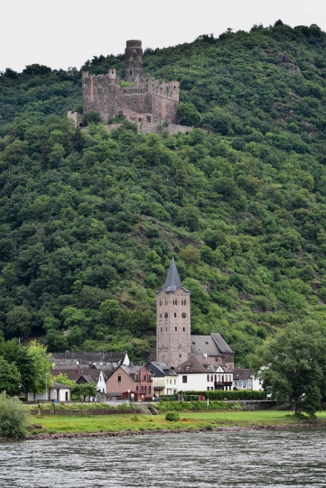 Rhine River Castle 3