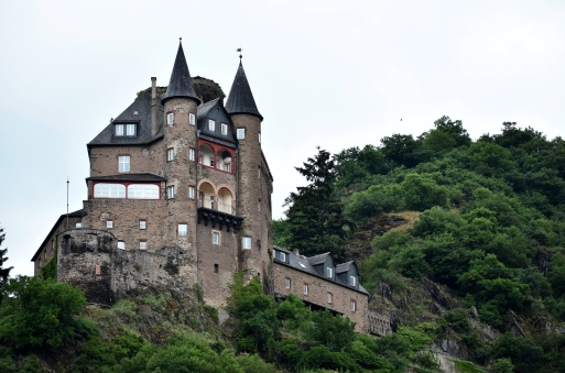 Rhine River Castle 4