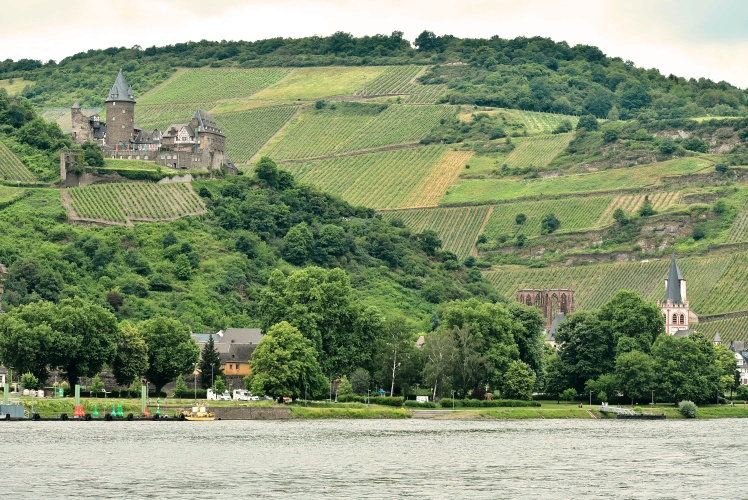 Rhine River Castle 5