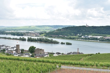 Rudesheim - from cable car 2