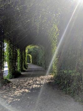 Schwetzingen gardens3