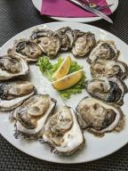 Oysters for breakfast in Ston Croatia