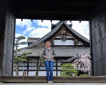 Kyoto walk sakura