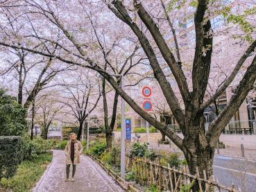Sakura Street Roppongi Hills
