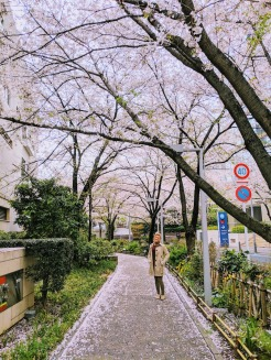 Sakura Street Roppongi Tokyo