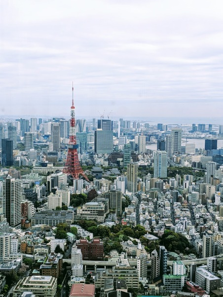 Tokyo from Mori art Museum observation deck
